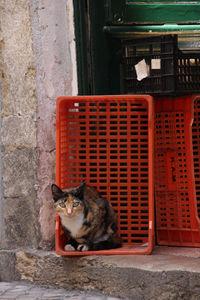 Lisbonne_6