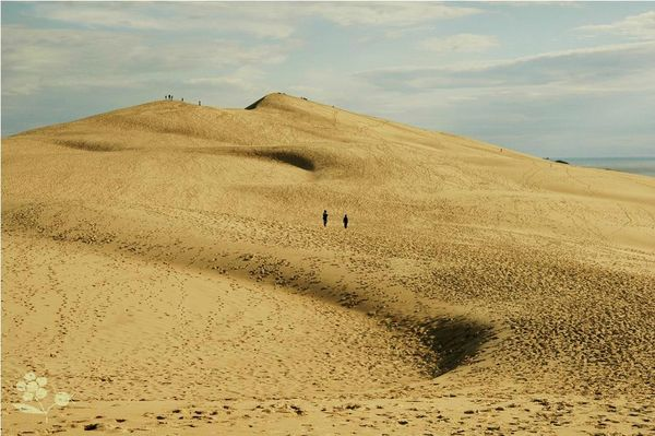 Dune du Pilat_3