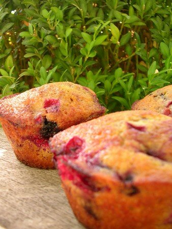 muffins_fruits_rouges1