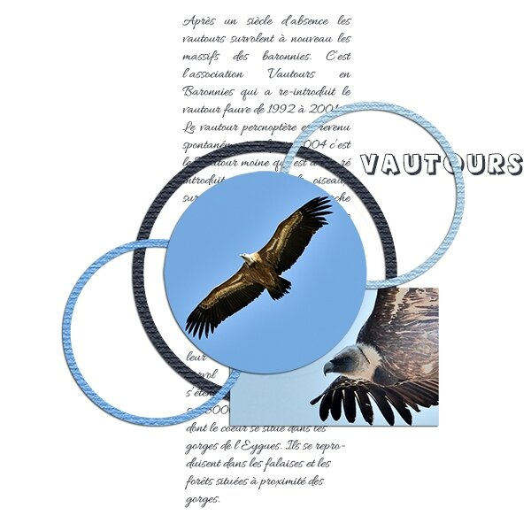 lpage ady DCS Template 1 avril 2014