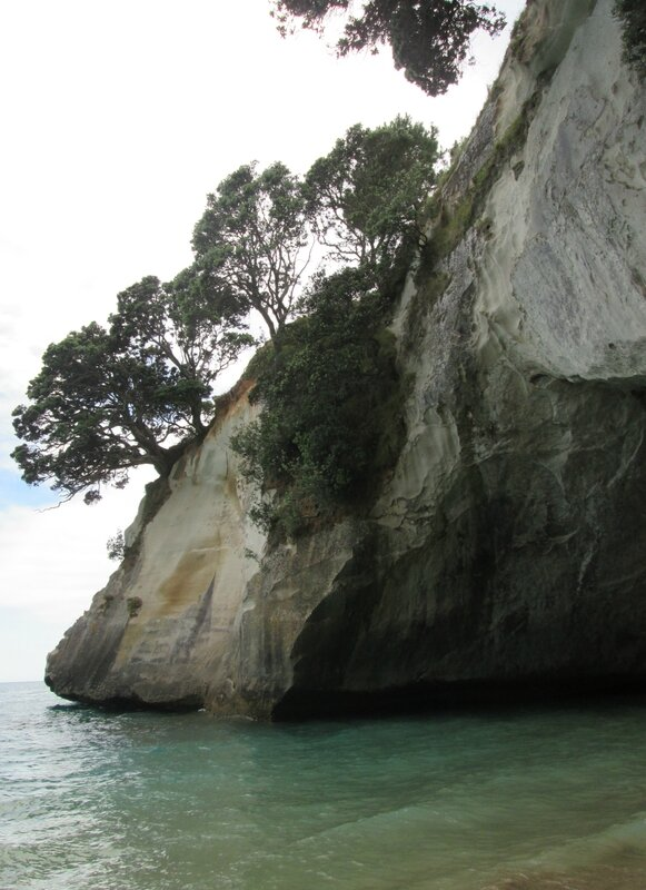Cathedral Cove (2)