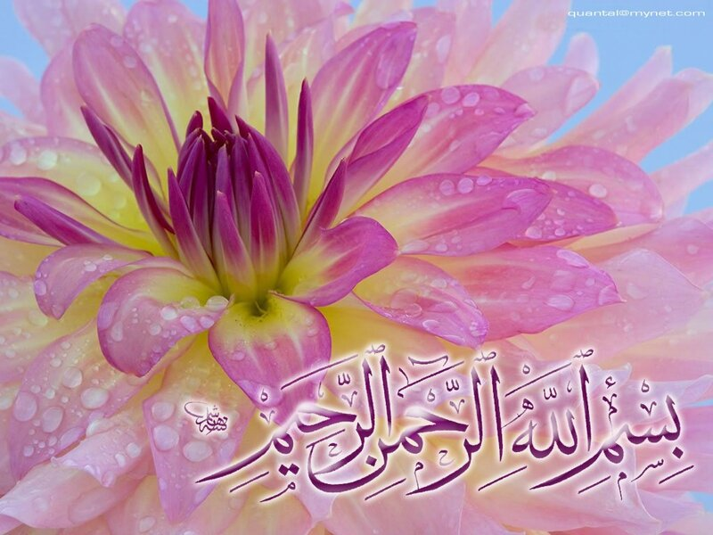 fleur_islam