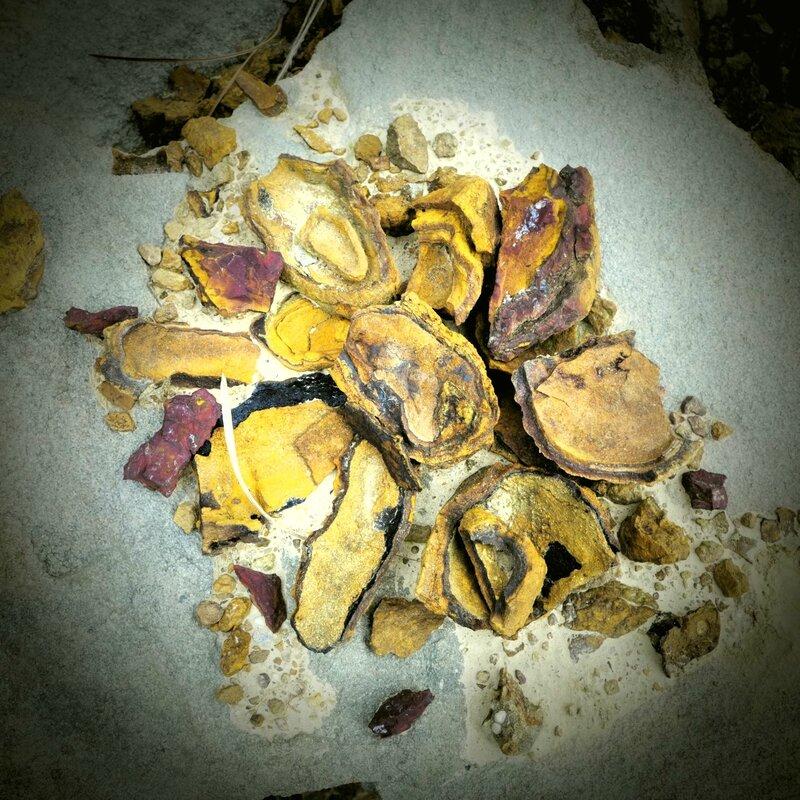 fleur de roche yurtao