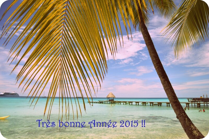 bonne année 2015 BLOG