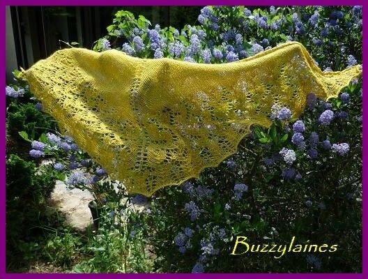 Châle en laine zéphyr coloris moutarde par Buzzylaines