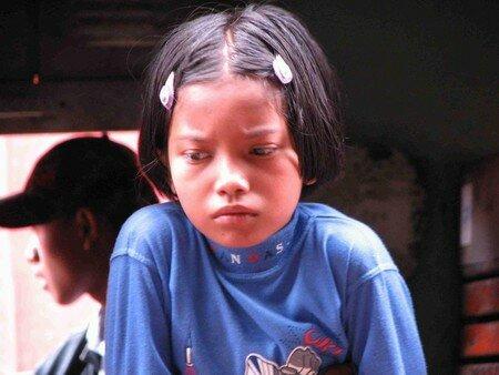 Birmanes__Birmans__37_