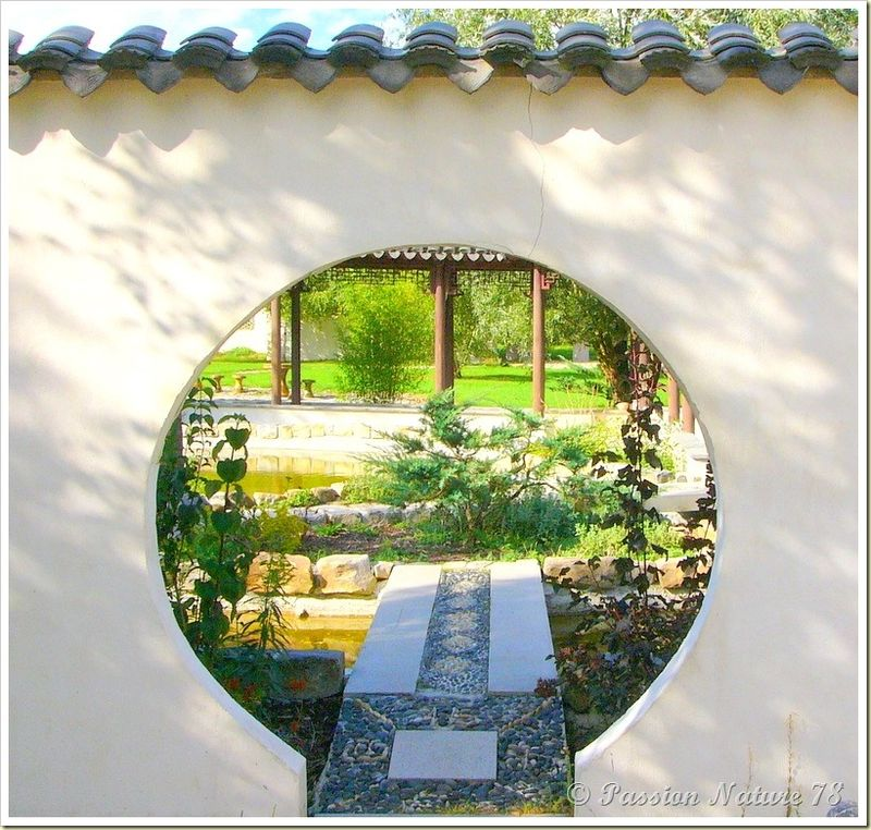 Le jardin Yili (4)
