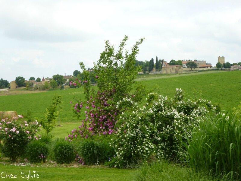 Bas jardin5