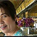 Mathiesen Andrée Andoo_Branche Montocchio en Thailande_Vidéo youtube