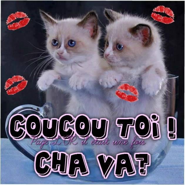 coucou_028