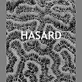 Hasard, de sofia perez