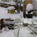 De l'animation dans mon jardin !
