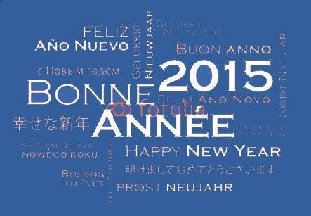 bonne-annee-2015-bleu2
