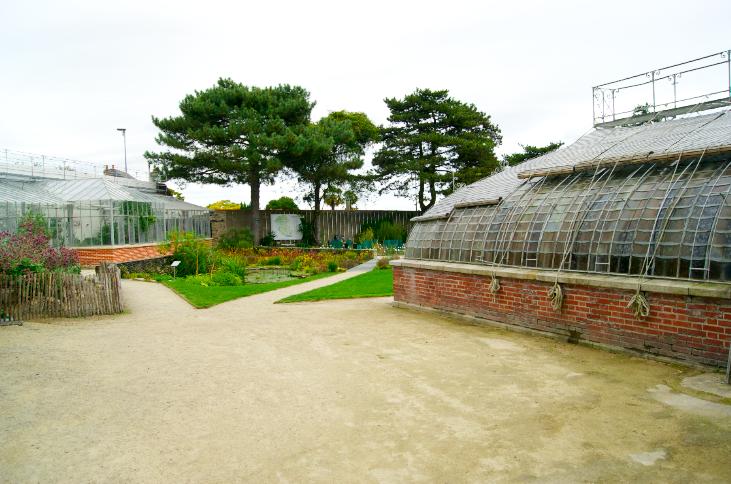 Nantes le jardin des plantes merci ginette for Jardin nantes