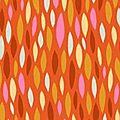 dardik orange
