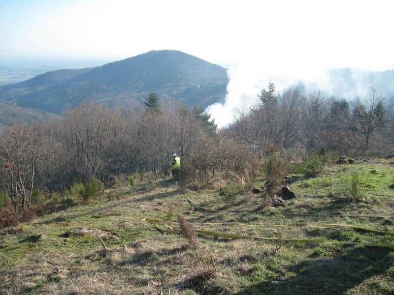 Feu de forêt 027