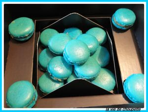 macarons bleus 011