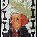 n° 567, chien chic (471x640)