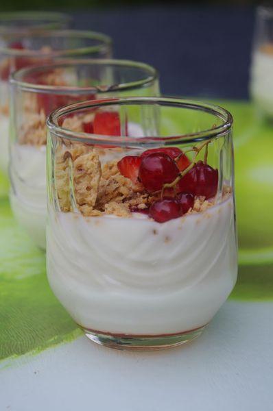 Verrines yaourt fraises groseilles Macarons 2013 (8)