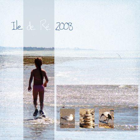 ile_de_R__2008