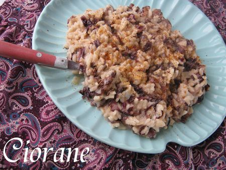 risotto-trevisse