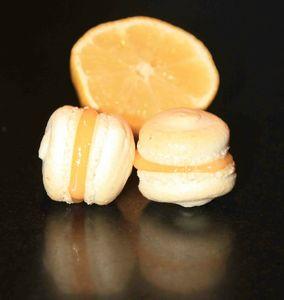 macaron citron 5