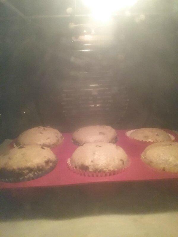 Petits gâteaux aux pépites de chocolat 082