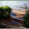 Lac 01091526