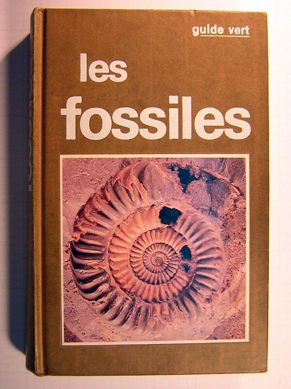LES FOSSILES (Solar)