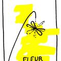 graph fleur petit