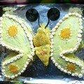 Papillon brillant
