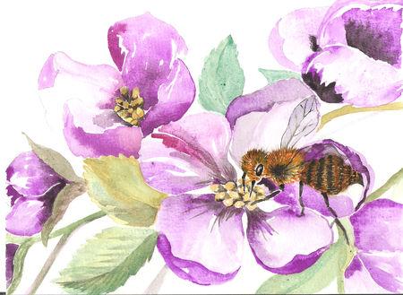 magnolia_001