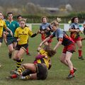 66IMG_0233T