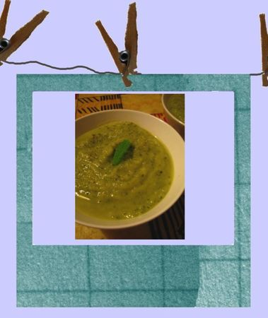 veloute_courgette_menthe