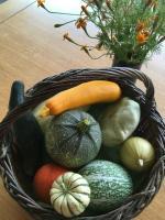 légumes - 2
