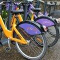Vélos (Bretagne-Vannes)_6613