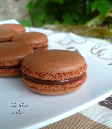 Macarons marrons nutella 6