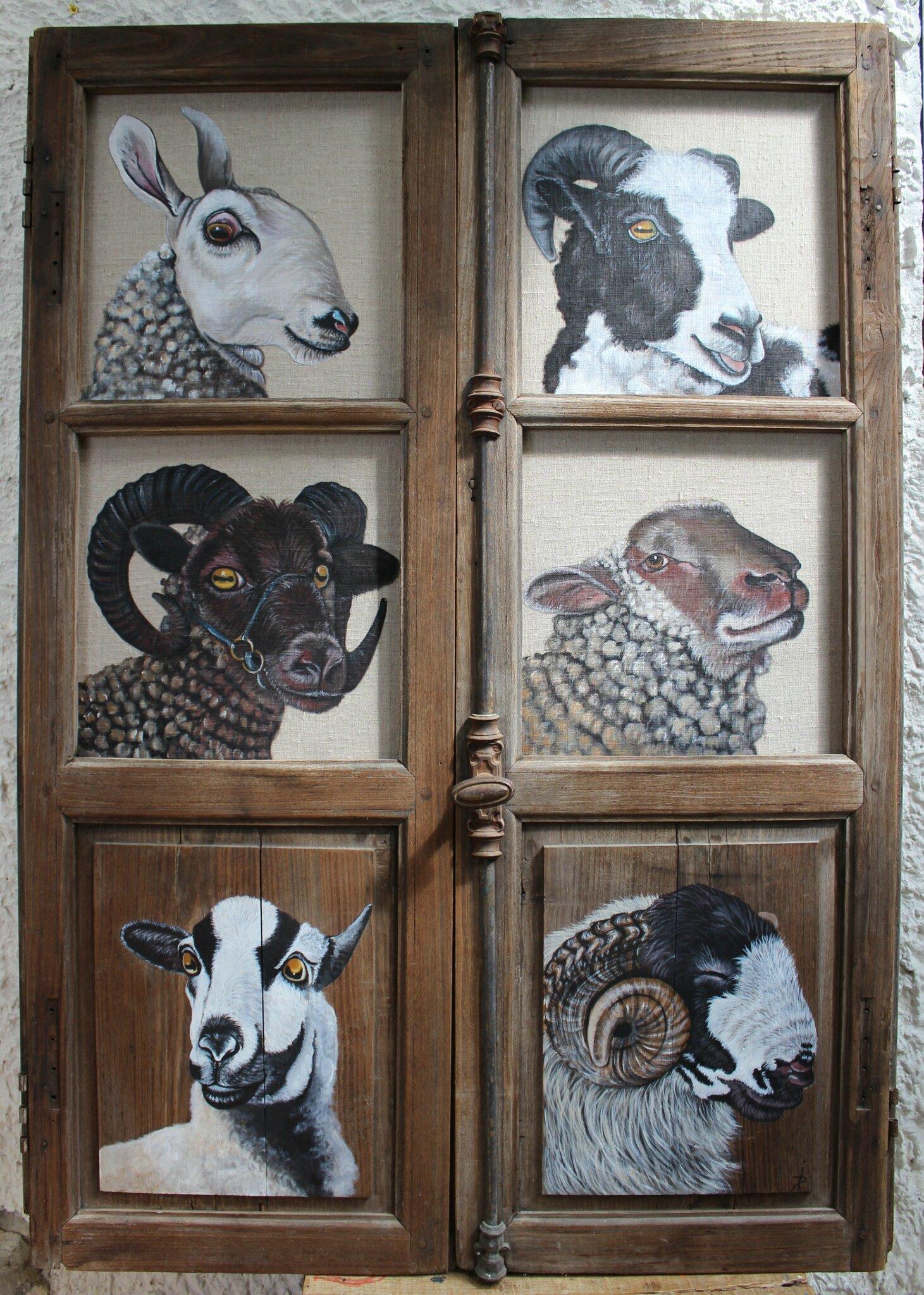 portrait moutons 121x43 x2 photo de i animaux en libert 2013 pas si b te. Black Bedroom Furniture Sets. Home Design Ideas