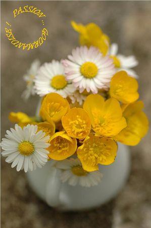 Bouquet_terrine_poulet__curry__coriandre__raisins_blonds__lait_de_coco