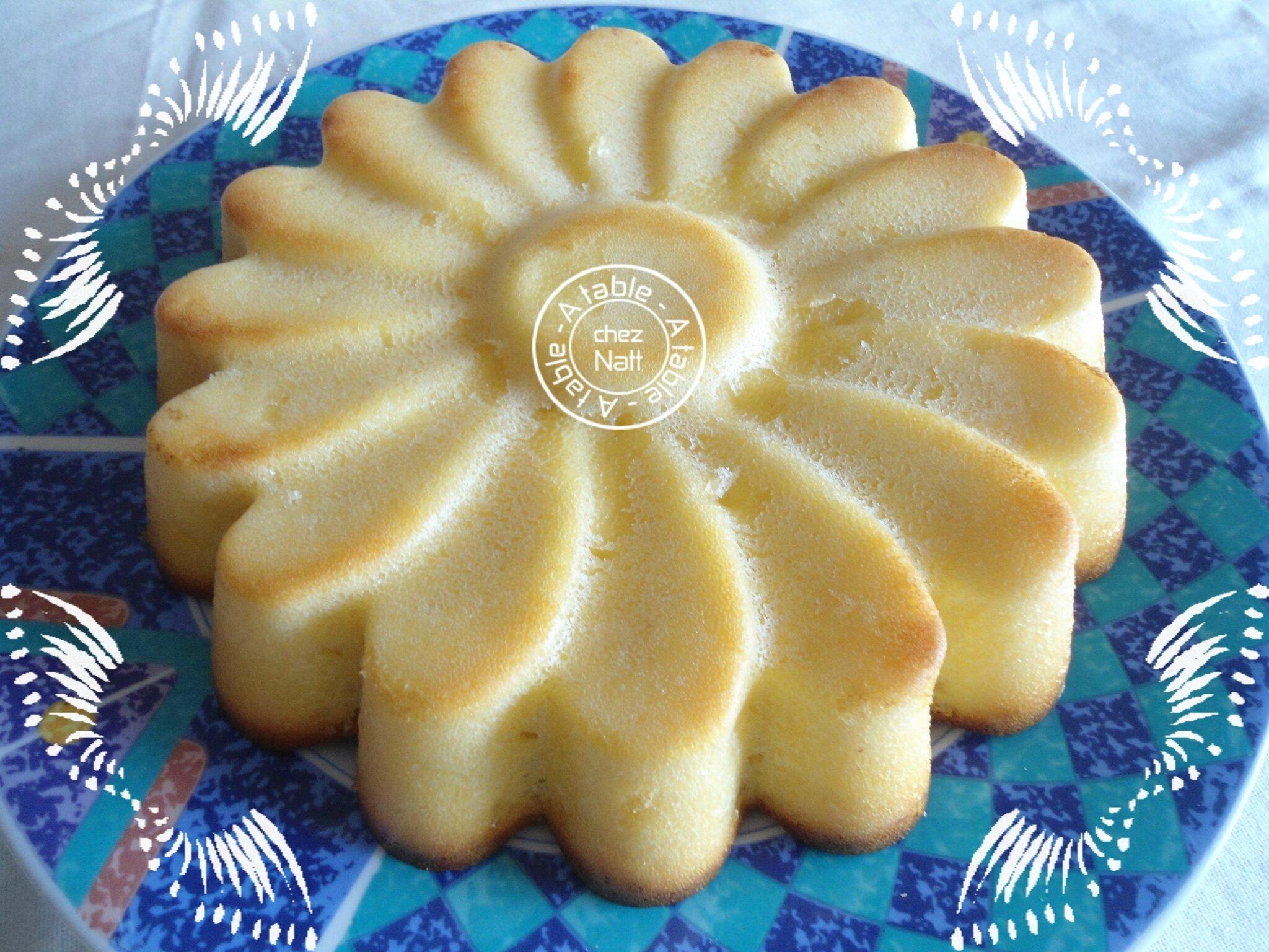 Recette gateau yaourt citron chocolat