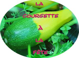 courgette_bicolore