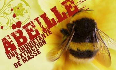 Signez la PÉTITION pour un moratoire visant à stopper les pesticides tueurs d'abeilles !