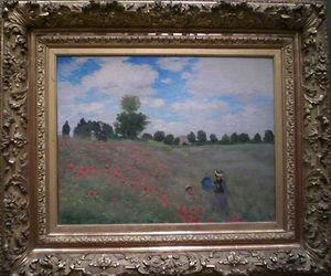 Coquelicots de Monet