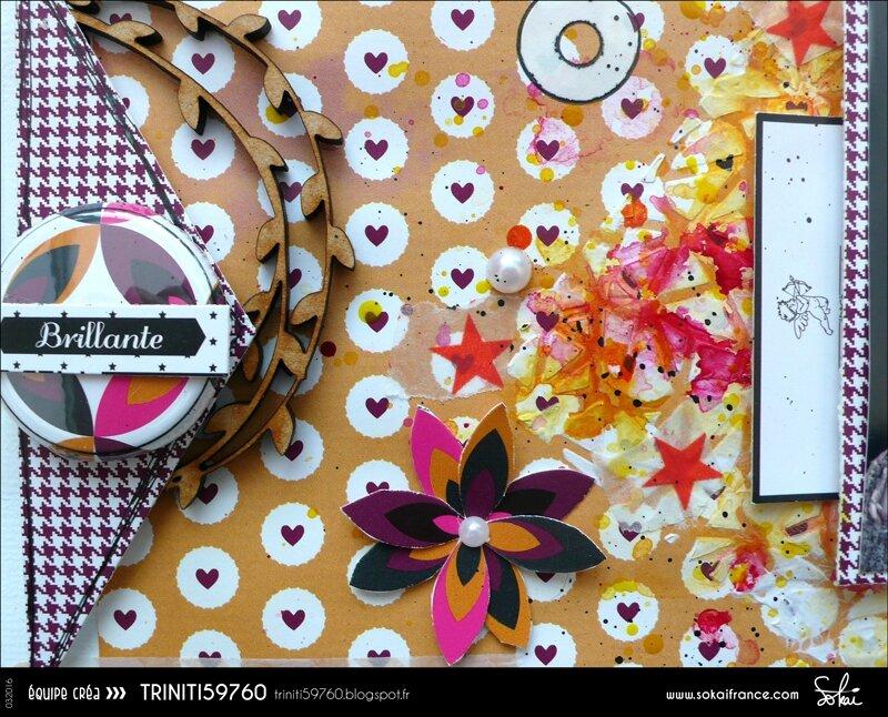 Triniti59760-Sokai-032016-Page-2-4