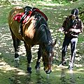 balade equestre gastronomique à La Lucerne d'Outremer (60)