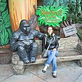 Rainforest cafe (11)