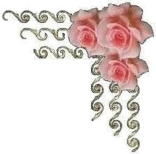 Roses coins trans