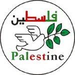 palestine_dove