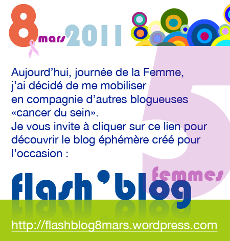 lien_vers_flashblog2