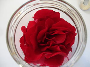 P_tales_de_3_roses_rouges